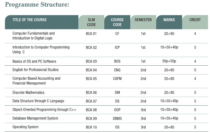 bachelor of computer applications assignments Earn an affordable bachelor of science in computer networks and about the computer networks and cybersecurity bachelor's real-world applications.